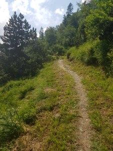 Le-trail-des-feurs-a-bareges 2018