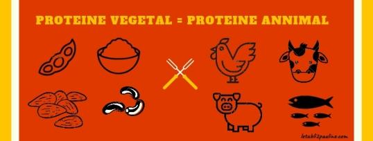 PROTEINE VEGETAL = PROTEINE ANNIMAL